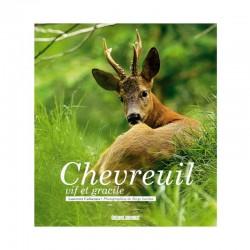 Chevreuil - Vif et gracile